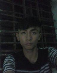 phan hong