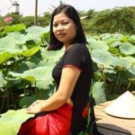 kimthai