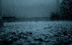 RainNight94