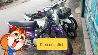 tuanphong
