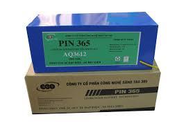 Pin 365
